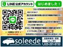 24G4WD7人乗ナビテレビHIDETCバックカメラ(2枚目)