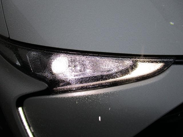 TRDエアロ テイン車高調 トヨタセーフティセンスC(9枚目)