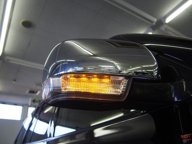 スーパーエクシード 本革 サンルーフ ロックフォード HDD(13枚目)