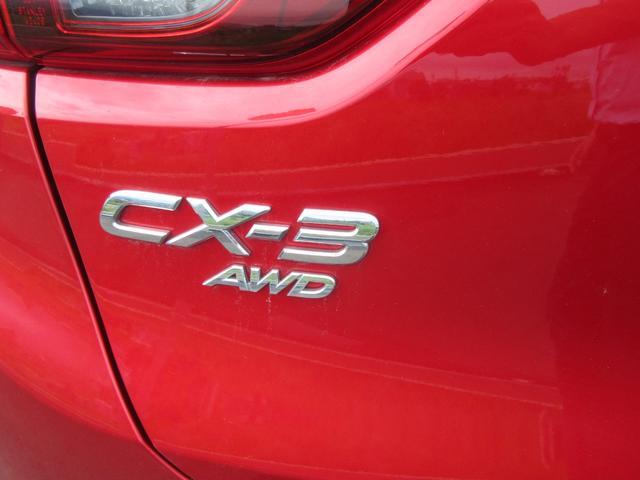 XD 4WD(7枚目)