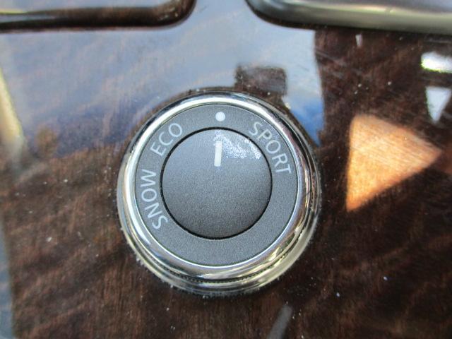 250GT Aパッケージ 前席パワーシート 社外20AW 車高調 純正HDDナビ フルセグ Bカメラ クルコン ETC スマートキー 社外ヘッドライト(27枚目)