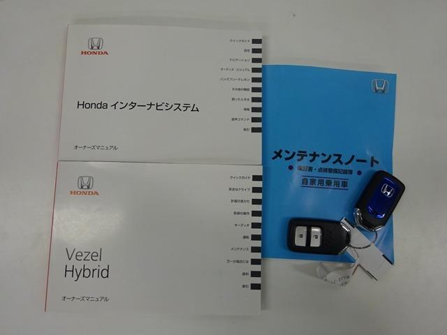ハイブリッドX NAVI DVD再生 Rカメラ LED スマ(20枚目)