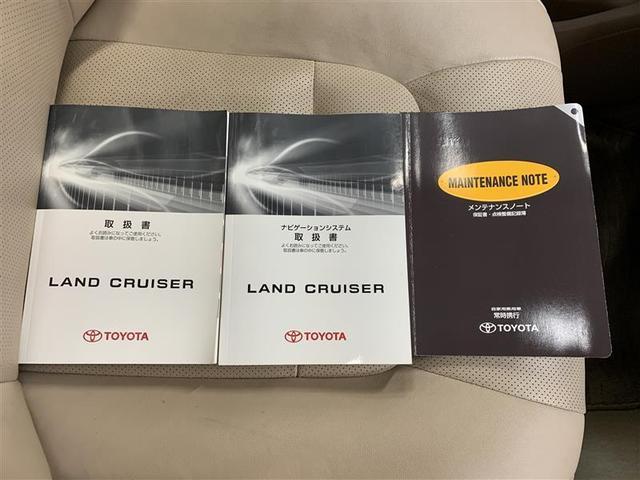 AX Gセレクション HDDナビ フルセグ 純正アルミ CD(19枚目)