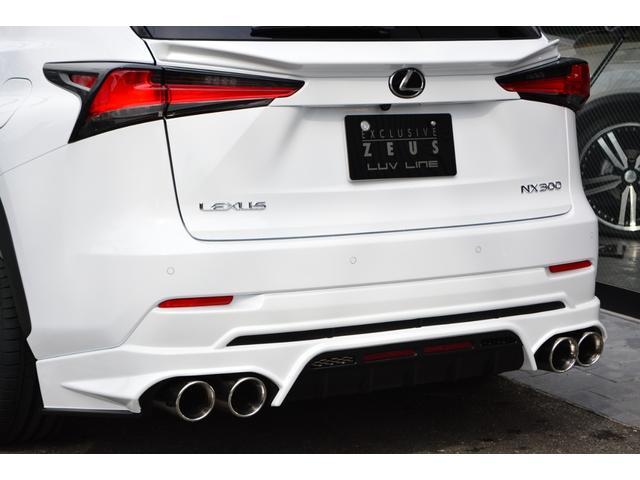 NX300 Fスポーツ ZEUS新車カスタムコンプリートカー(10枚目)