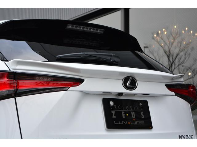 NX300 Fスポーツ ZEUS新車カスタムコンプリートカー(13枚目)