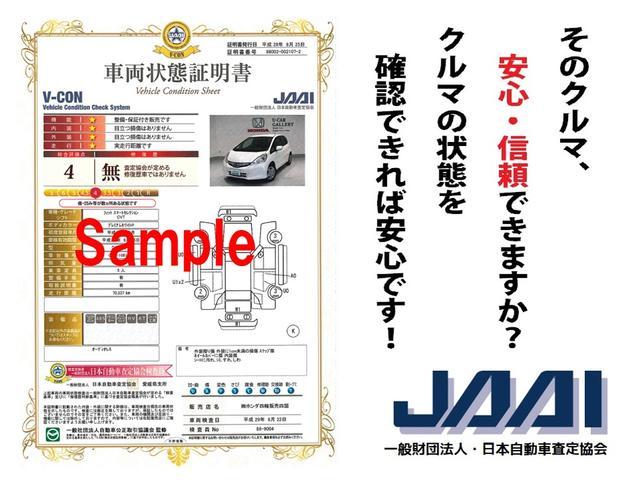 13G・Fパッケージ コンフォートエディション メモリーナビ(30枚目)