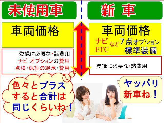 ファン・ターボ・新車・ナビ・ETC・コーティング・マット付き(6枚目)