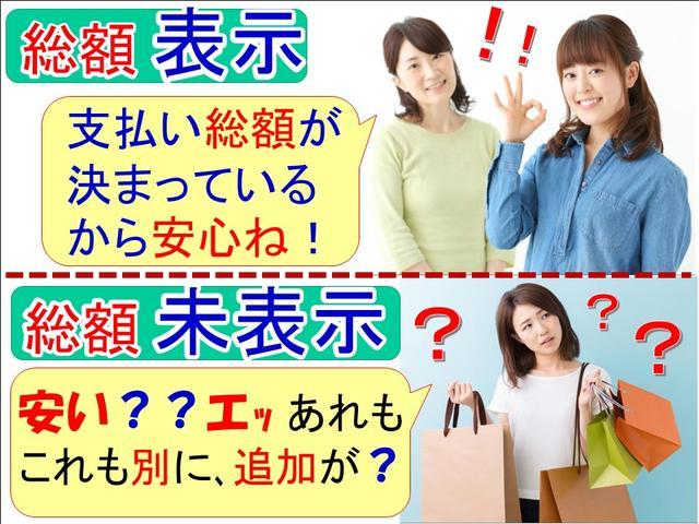 ファン・ターボ・新車・ナビ・ETC・コーティング・マット付き(7枚目)