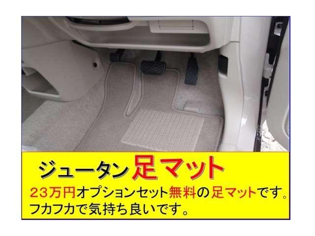 23万円オプションセット無料の・・ジュータンマット・・です。水洗いが出来ますので何時もキレイに使えます。