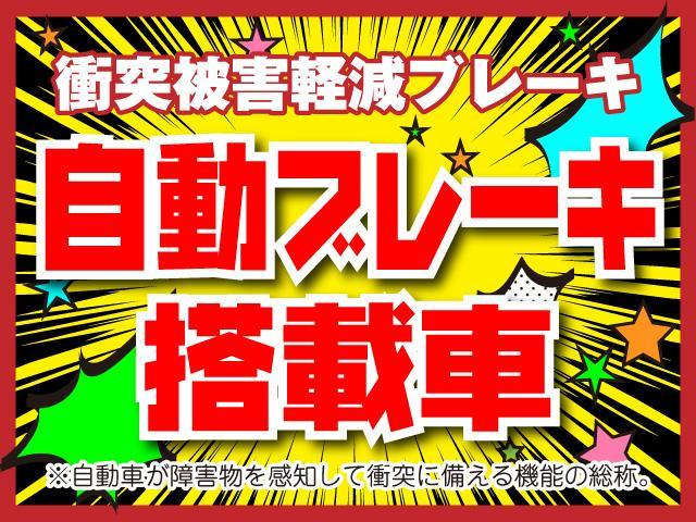 S 自動ブレーキ 障害物センサー ナビ TV バックカメラ(5枚目)