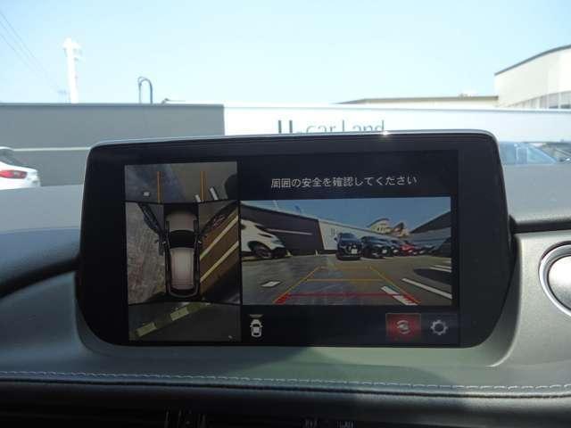 25S Lパッケージ フルセグTV 全周囲カメラ 禁煙車(14枚目)
