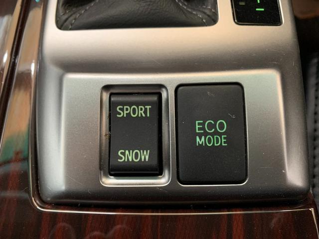 250G リラックスセレクション 新品車高調・新品19アルミ・新品シートカバー・新品純正G'Sバンパー・純正ナビ・TV・ETC・バックカメラ・パワーシート・フォグランプ・ウィンカーミラー・流れるウィンカー・LEDファイバーテール(33枚目)
