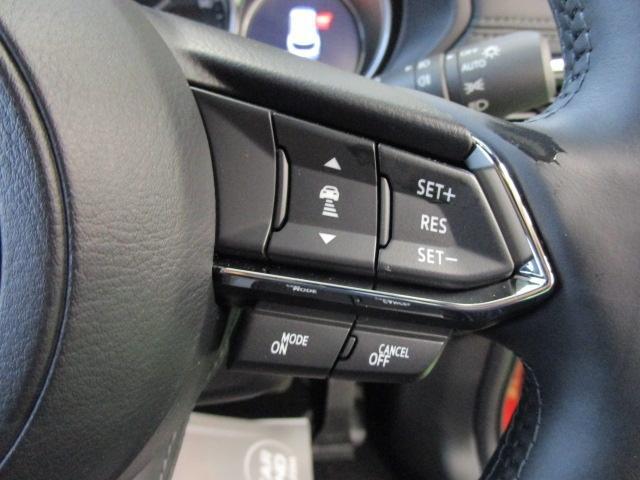 XD L-PKG 4WD マツコネ 360°モニター 試乗車(14枚目)