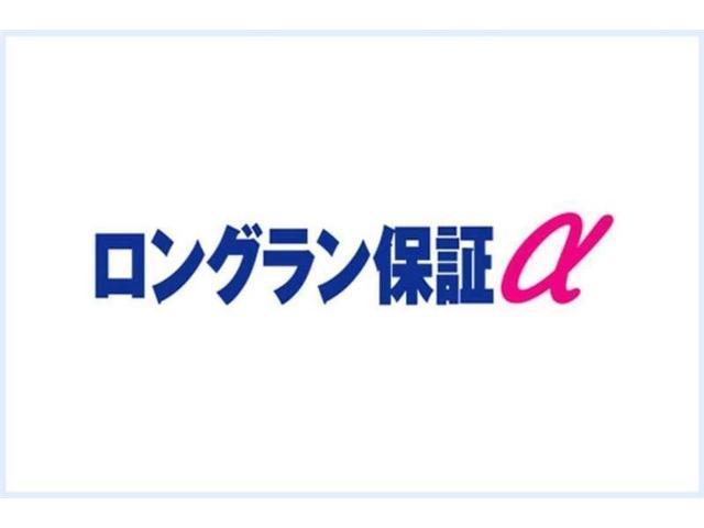 ロングルートバンDX 点検記録簿 ABS パワステ(5枚目)