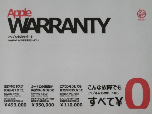 20周年記念車 SDナビ フルセグTV バックカメラ(4枚目)