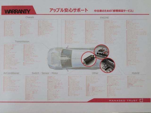 20周年記念車 SDナビ フルセグTV バックカメラ(9枚目)