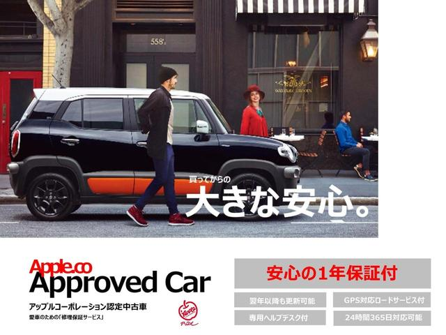 X SA 福祉車 スローパー 1オーナー 電動ウインチ ナビ(2枚目)