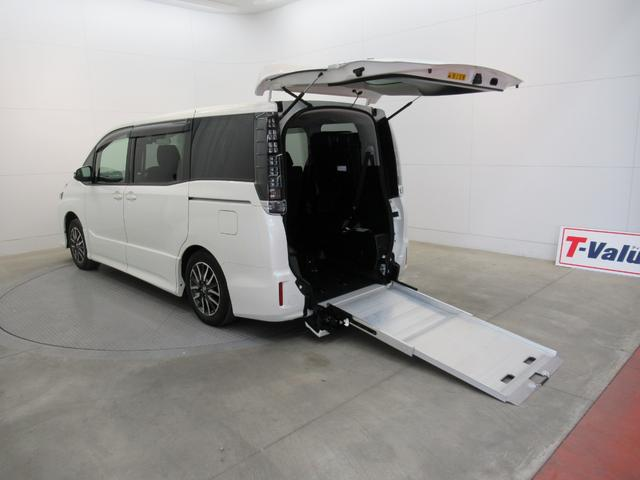 ZS車いす仕様スロープタイプタイプ2(11枚目)