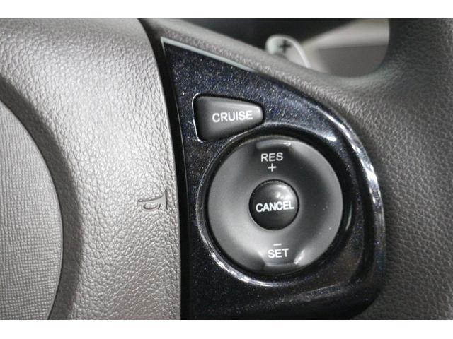 ツアラー・Lパッケージ OP10年保証対象車 クルコン(16枚目)