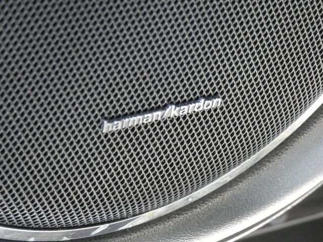 フル装備 ABS ESP DSR SRSエアバッグ Wガラススライディングルーフ 20インチアルミホイール
