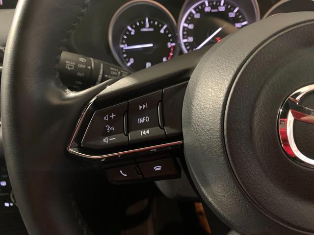 XDプロアクティブ 軽油 OP10年保証対象車 マツダコネクトナビ 360°ビューモニター BOSEサウンドシステム(18枚目)