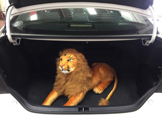 105cmのライオンでも楽々はいります!