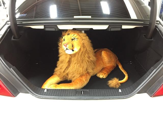 105センチのライオンも楽々入ります♪