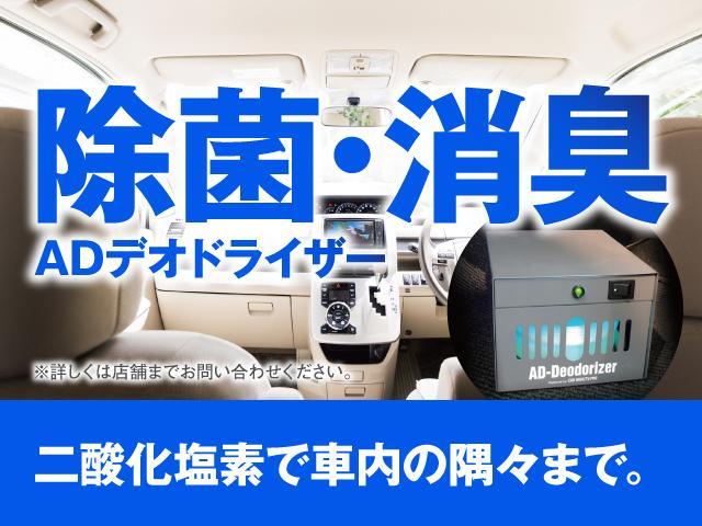 ライダー サンルーフ 電動カーテン 片側パワースライド バックカメラ ETC フリップダウンモニター(40枚目)