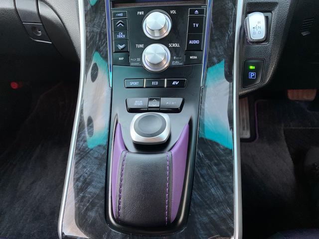 G ヴィオラ 特別仕様車 ナビ フルセグTV モデリスタフルエアロ モデリスタアルミホイル モデリスタフロントグリル トランクスポイラー レザーシート パワーシート シートヒーター バックカメラ ドライブレコーダー(35枚目)