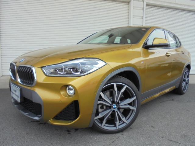 BMW xドライブ20i MスポーツXデビューP ACCデモカー