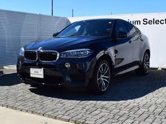 BMW X6 Mベースグレード 黒革 SR 衝突軽減B 純正ナビ 20AW