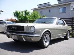 フォード マスタング289ciポニーインテリア新品クーラー