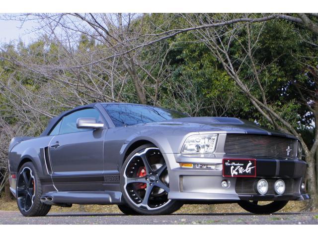 フォード V6エレノアコンバーチブル 22インチジオバンナ