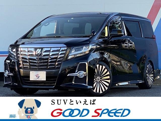 トヨタ 2.5S Aパッケージ アルパインBIG-X10 バックカメラ 両側電動スライドドア ギャルソン20イン チAW スマートキー LEDヘッド フォグランプ オットマン