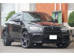 BMW X6 MLCIモデル LEDヘッドライト シュニッツァー22AW