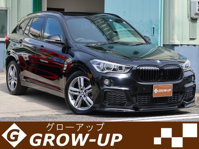 BMW X1 xDrive18d Mスポーツ ワンオーナー カスタム車両