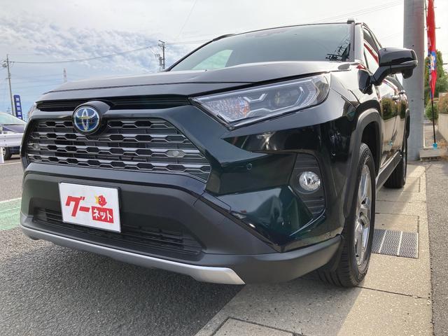 トヨタ RAV4 ハイブリッドG ステアリングヒーター パワーバックドア シートヒーター デジタルインナーミラー トヨタセーフティセンス クルーズコントロール パワーシート