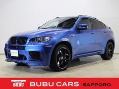 BMW X6 Mベースグレード・レーダー・バイキセノン・純正ナビTV