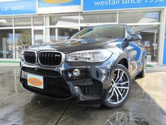BMW X6 M1オーナー Mファンクションシート ハーマンカードン 4WD