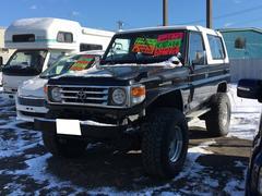 ランドクルーザー704WD FRPトップ リフトUP デフロック ウインチ付