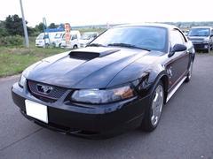 フォード マスタングG
