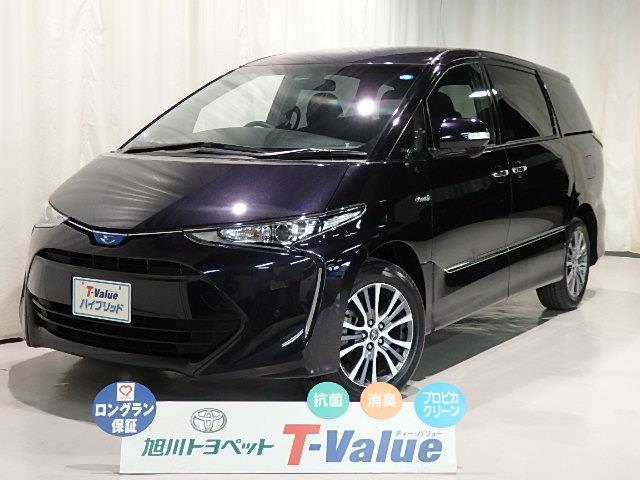 トヨタ アエラス 4WD TVHV