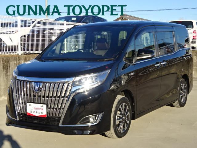 トヨタ ハイブリッドGi プレミアムパッケージ SDナビ LEDライト スマートキー クルコン Sセンス