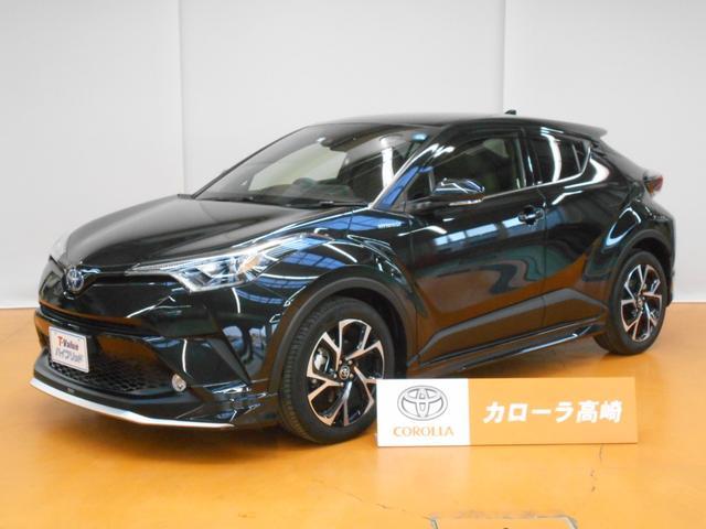 トヨタ G トヨタSS-P SDナビ フTV バックM LEDライト