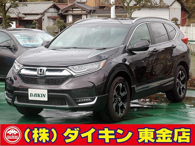 ホンダ EX・マスターピース ナビTV 本革 SR ホンダセンシング