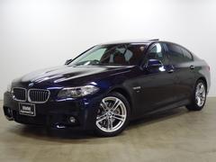 BMW523i Mスポーツ 18AW SR ACC パドル 地デジ