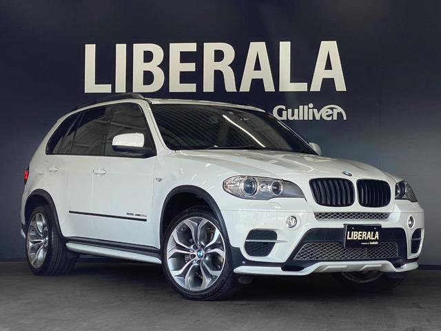 BMW X5 xDrive 35dブルーパフォーマンス 純正OP20inchAW iDriveナビTV Cアクセス