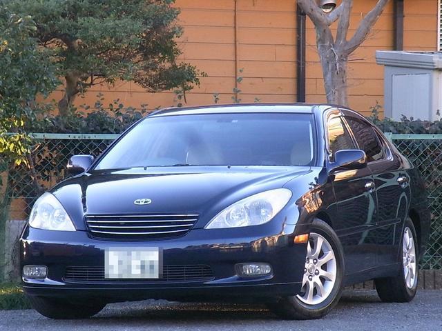 トヨタ 3.0G 18AW ローダウン ナビ ETC TV Bカメラ