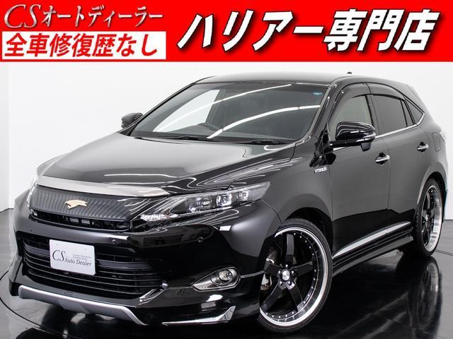 トヨタ エレガンス 4WD フルエアロ 新品22AWローダウン ナビ