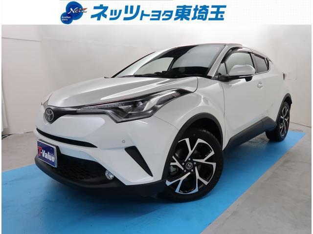 トヨタ G-T 純正SDナビ バックモニター サポカー 本革シート